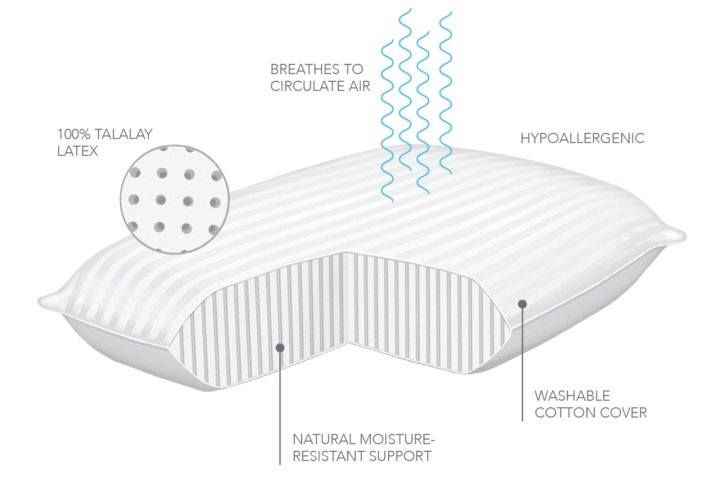the talalay bed in for traditionally dream neoplano a pillow provides natural stress ideal cushion companion product by anti pleasant latex resistant cm and revitalising shaped filled mite bacterial hypoallergenic structure nights its foam is cotton breathable